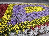 Устройство и оформление цветников в Сочи