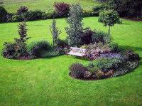 Комплексное озеленение участков